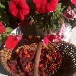 Tayberry's en aardbeien