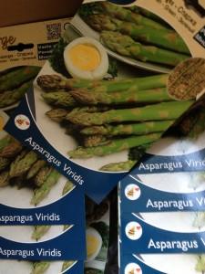 asperges planten