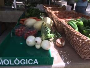 biomarkt lissabon