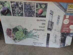 biomarkt lissabon Quinta